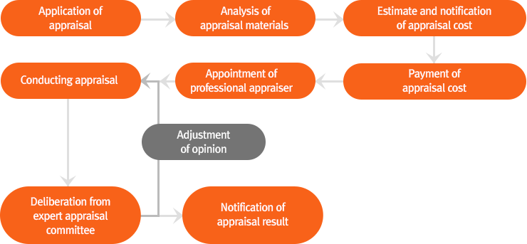 Appraisal procedure image